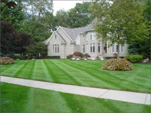 Littleton Colorado Lawn Care  Centennial Property Maintenance (303) 713-9306