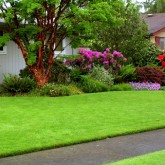 Centennial Property Maintenance | Lawn Care Maintenance |  (303) 713-9306