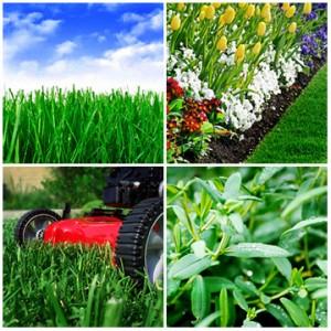 Heritage Greens Lawn Care Landscape Maintenance by Centennial Property Maintenance | (303) 713-9306