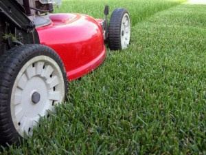 Heritage Greens Lawn Care Services | Centennial Property Maintenance | (303) 713-9306