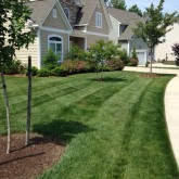 Mowing Fertilizer and Mulching by Centennial Property Maintenance Centennial CO (303) 713-9306