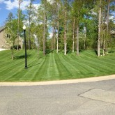 Mowing and Fertilizer by Centennial Property Maintenance Centennial CO (303) 713-9306