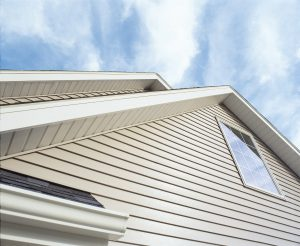 Painting & Siding Home Improvement Services | Centennial Property Maintenance | (303) 713-9306
