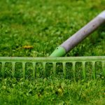 Centennial Colorado Yard Clean Up and Lawn Care