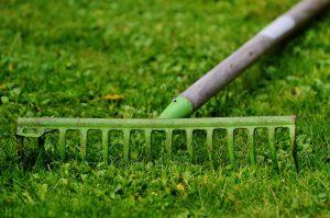 Centennial Colorado Yard Clean Up and Lawn Care | Centennial Property Maintenance | (303) 713-9306